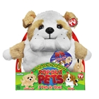 Jay At Play - Pop Out Pets 3 in 1 - Catei