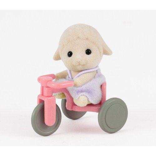 Oita cu Tricicleta
