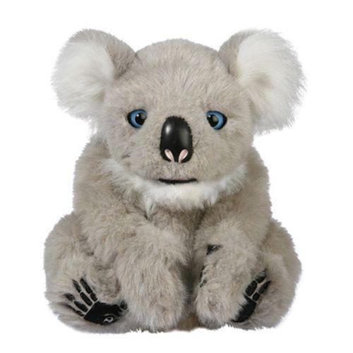 Pui de Koala Interactiv