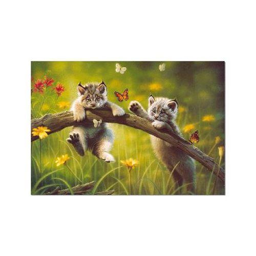 Puzzle 500 Piese Tara Pisicilor