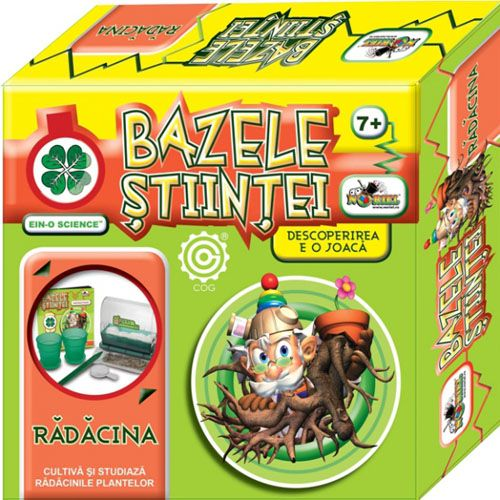 Bazele Stiintei - Radacina