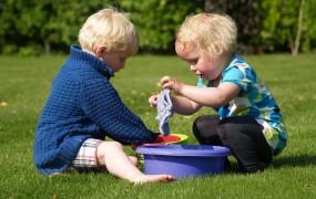 Cum implicam copiii in treburile casnice
