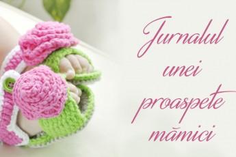jurnalul unei proaspete mamici