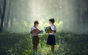 Sistemele de învățământ din România. Ce școală este cea mai potrivită pentru copilul meu?