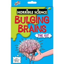 Galt - Bulging Brains - Kit Experiment Creierul Uman