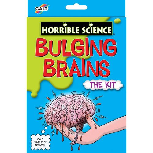 Bulging Brains - Kit Experiment Creierul Uman