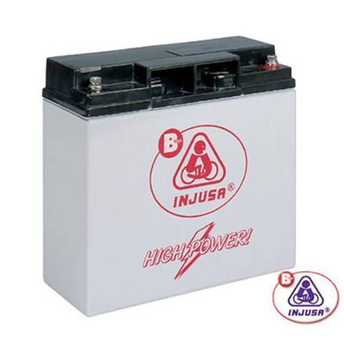 Baterie 12V Reincarcabila pentru Masinute