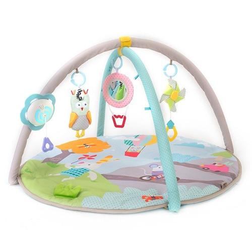Taf Toys Centru de Joaca Muzical Natura Fermecata