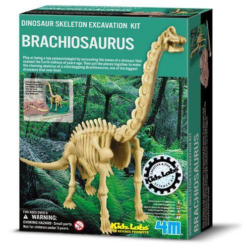 Set Arheologic Brachiosaurus