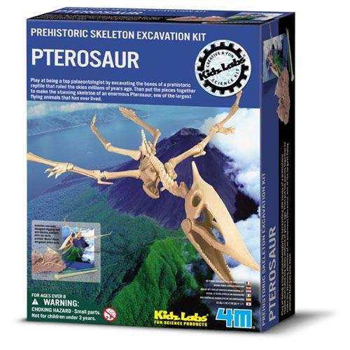 Set Arheologic Pterosaur