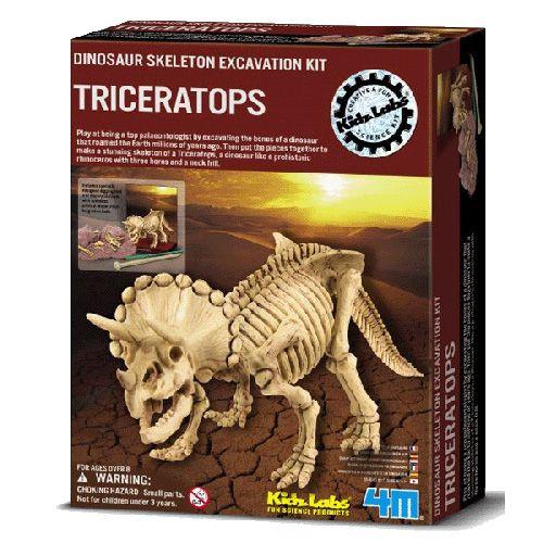 Set Arheologic Triceratops